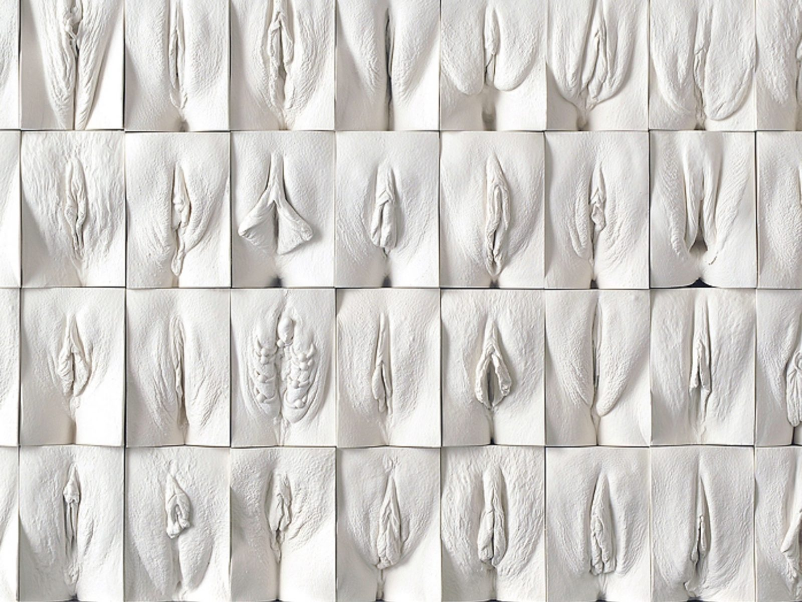 Great wall of vagina Jamie McCartney